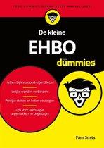 Voor Dummies - De kleine EHBO voor Dummies
