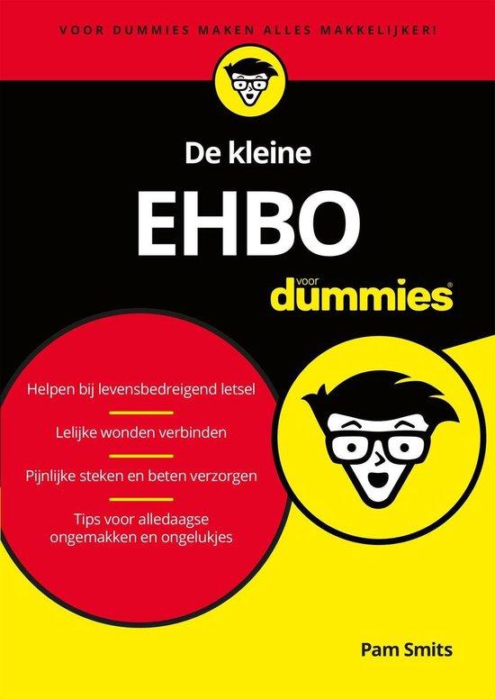 Voor Dummies - De kleine EHBO voor Dummies - Pam Smits pdf epub