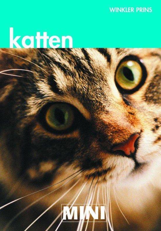 MINI WP Katten - Deborah Gill   Fthsonline.com