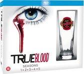 True Blood - Seizoen 1 t/m 5 (Inclusief True Blood glas!) (Blu-ray)