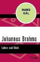 Johannes Brahms - Leben und Werk