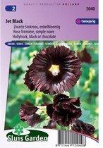 Sluis Garden - Stokroos Jet Black (Alcea rosea)