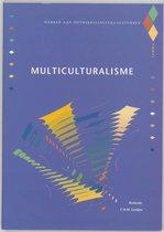 Werken aan ontwikkelingsvraagstukken / Multiculturalisme