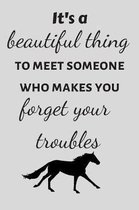 It's a Beautiful Thing to Meet Someone Who Makes You Forget Your Troubles