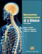 Neuroanatomy and Neuroscience at a Glance