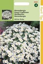 Hortitops Zaden - Nierembergia hippomanica White Robe
