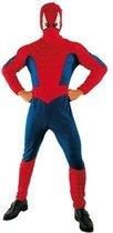 Spiderman volwassen