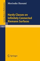Hardy Classes on Infinitely Connected Riemann Surfaces