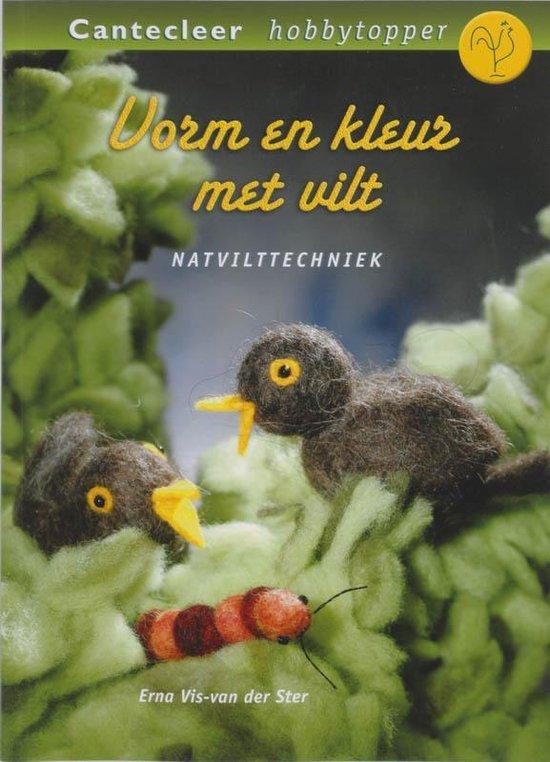 Vorm En Kleur Met Vilt - Erna Vis-van der Ster |