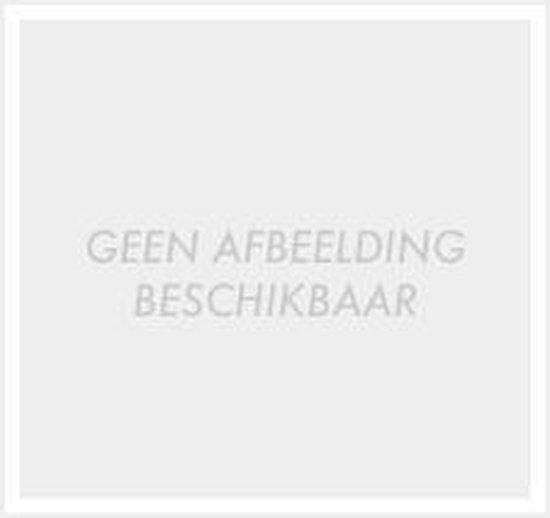 RTI 6 Verkoop-en verhuur Reis- en toeristische informatie - P. van Kessel  