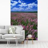 Alfalfagebied die in de zomer bloeien fotobehang vinyl breedte 180 cm x hoogte 270 cm - Foto print op behang (in 7 formaten beschikbaar)
