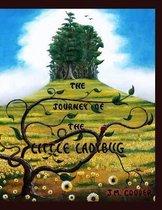 The Journey of the Little Ladybug