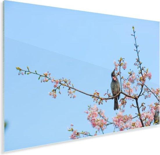 Veldleeuwerik tussen de bloesems Plexiglas 180x120 cm - Foto print op Glas (Plexiglas wanddecoratie) XXL / Groot formaat!