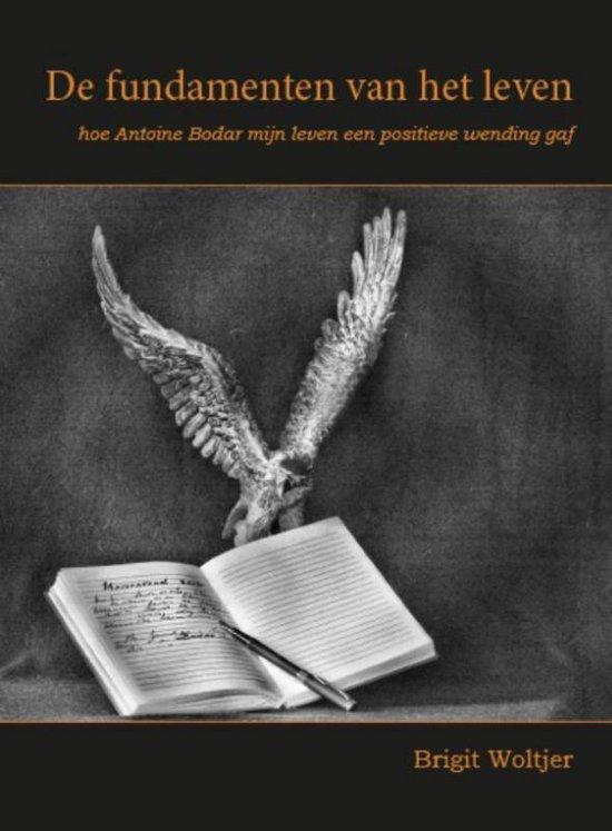 De fundamenten van het leven - Brigit Woltjer | Readingchampions.org.uk