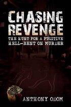 Chasing Revenge