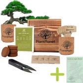 Bonsai starters kit - Bonsai zaden 4 soorten - Bonsai pot - Cadeau man & vrouw - Incl. E-book