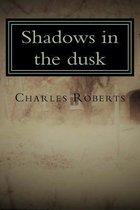 Shadows in the Dusk