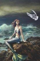 Mermaid on the Rocks Diary