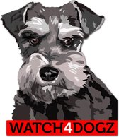 Schnauzer sticker (set van 2 stickers)