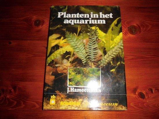Planten in het aquarium - Hameeteman  