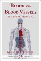 Blood and Blood Vessels: The Rivers Inside You