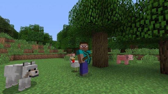 Minecraft Wii U Edition - Nintendo Wii U - Nintendo