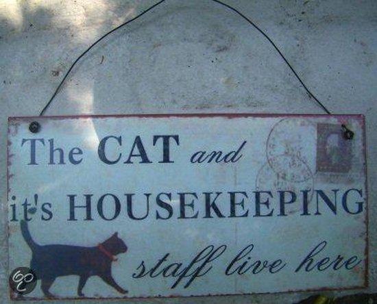Nowi Design Decoratief object Plaatje cats house