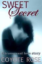 Sweet Secret: A Transexual Love Story