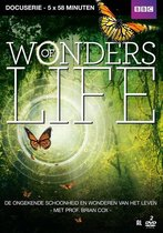 Special Interest - Wonders Of Life