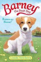 Barney the Boat Dog Runaway Horse!