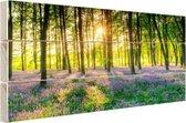 Kleurrijke bloemen in het bos Hout 30x20 cm - klein - Foto print op Hout (Wanddecoratie)