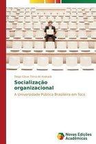 Socializacao organizacional