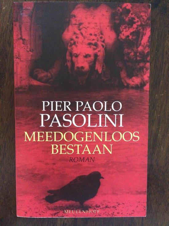 Meedogenloos bestaan - Pasolini pdf epub