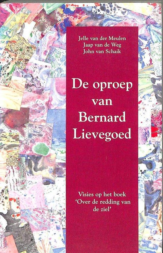 Boek cover De oproep van Bernard Lievegoed. Visies op het boek Over de redding van de ziel van Jelle van der Meulen (Paperback)