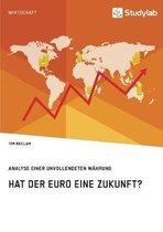 Hat Der Euro Eine Zukunft? Analyse Einer Unvollendeten W hrung