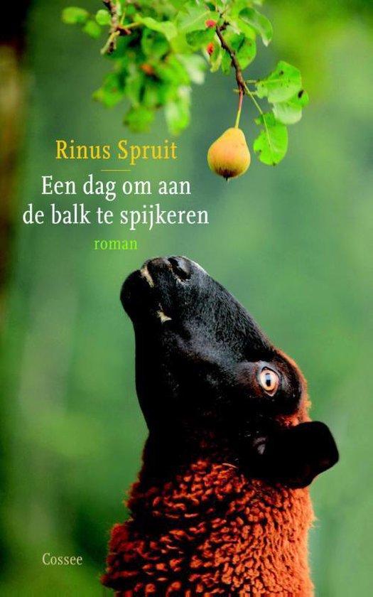 Een dag om aan de balk te spijkeren - Rinus Spruit  