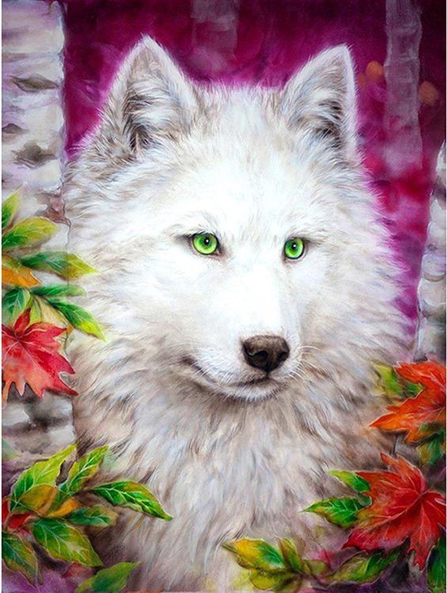 Diamond Painting World™ Witte wolf - Diamond painting pakket - volledig bedekt - 30x40cm