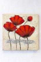"""Olieverf schilderij op doek 75 bij 75 cm. """"Klaproos rood"""""""