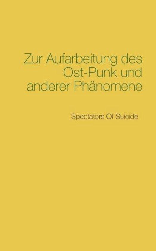 Boek cover Zur Aufarbeitung des Ost-Punk und anderer Phanomene van  (Paperback)