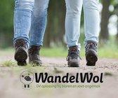 WandelWol 40 gram - De Oplossing bij Blaren en Voet Ongemak - Antidruk & Antiblaar