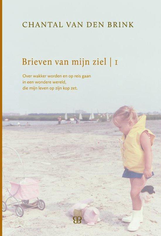 Brieven van mijn ziel 1993-1999 - Chantal van den Brink   Fthsonline.com