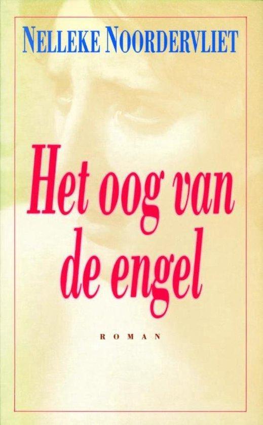 Het oog van de engel - Nelleke Noordervliet |