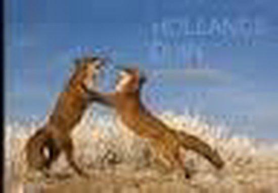 Hollands Duin - Lorenzo Maginzali   Fthsonline.com