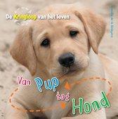 De Kringloop van het Leven  -   Van pup tot hond