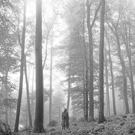 Folklore (LP)