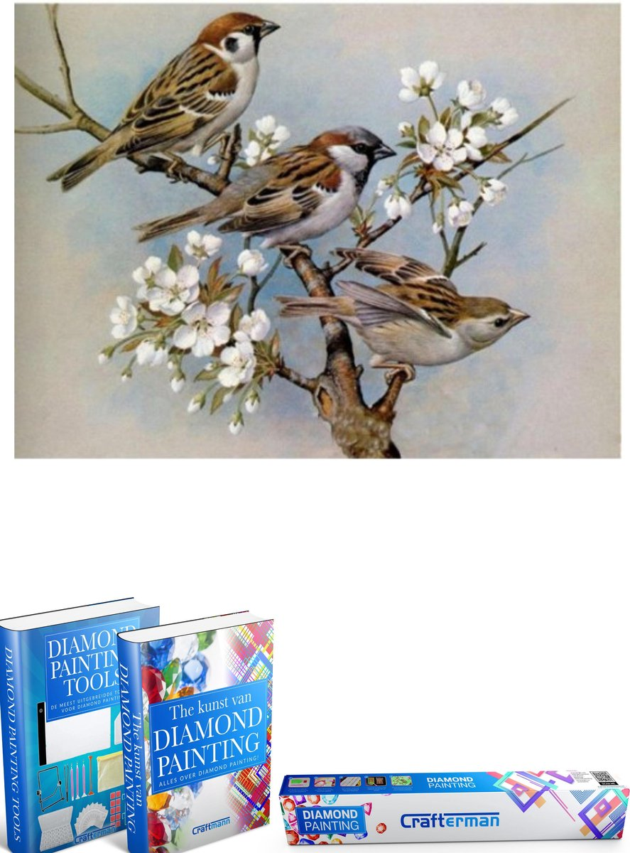 Crafterman™ Diamond Painting Pakket Volwassenen - Vogels op bloemen - 30x40cm - volledige bedekking - vierkante steentjes - 42 verschillende kleuren - hobby pakket - Met tijdelijk 2 E-Books