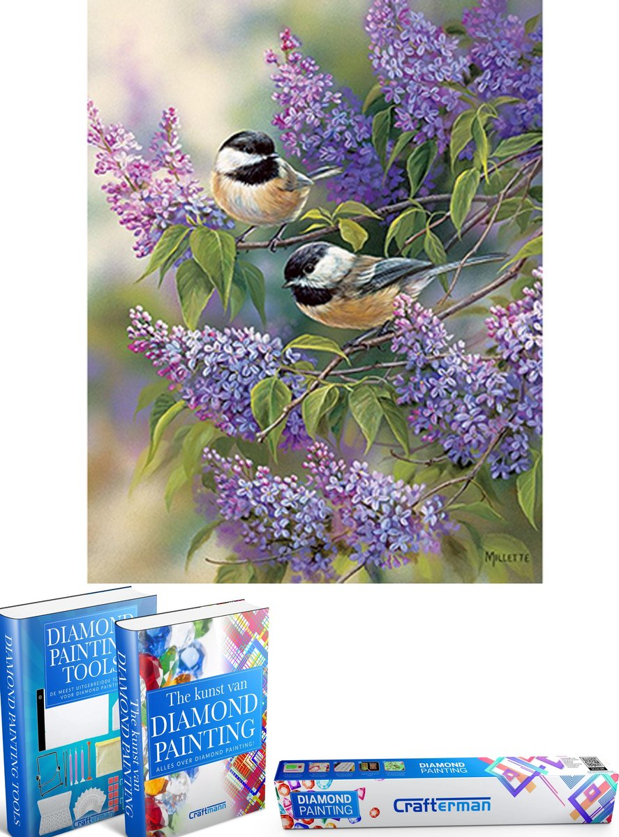 Crafterman™ Diamond Painting Pakket Volwassenen - Prachtige vogels op bloemen - 30x40cm - volledige bedekking - vierkante steentjes - 42 verschillende kleuren - hobby pakket - Met tijdelijk 2 E-Books