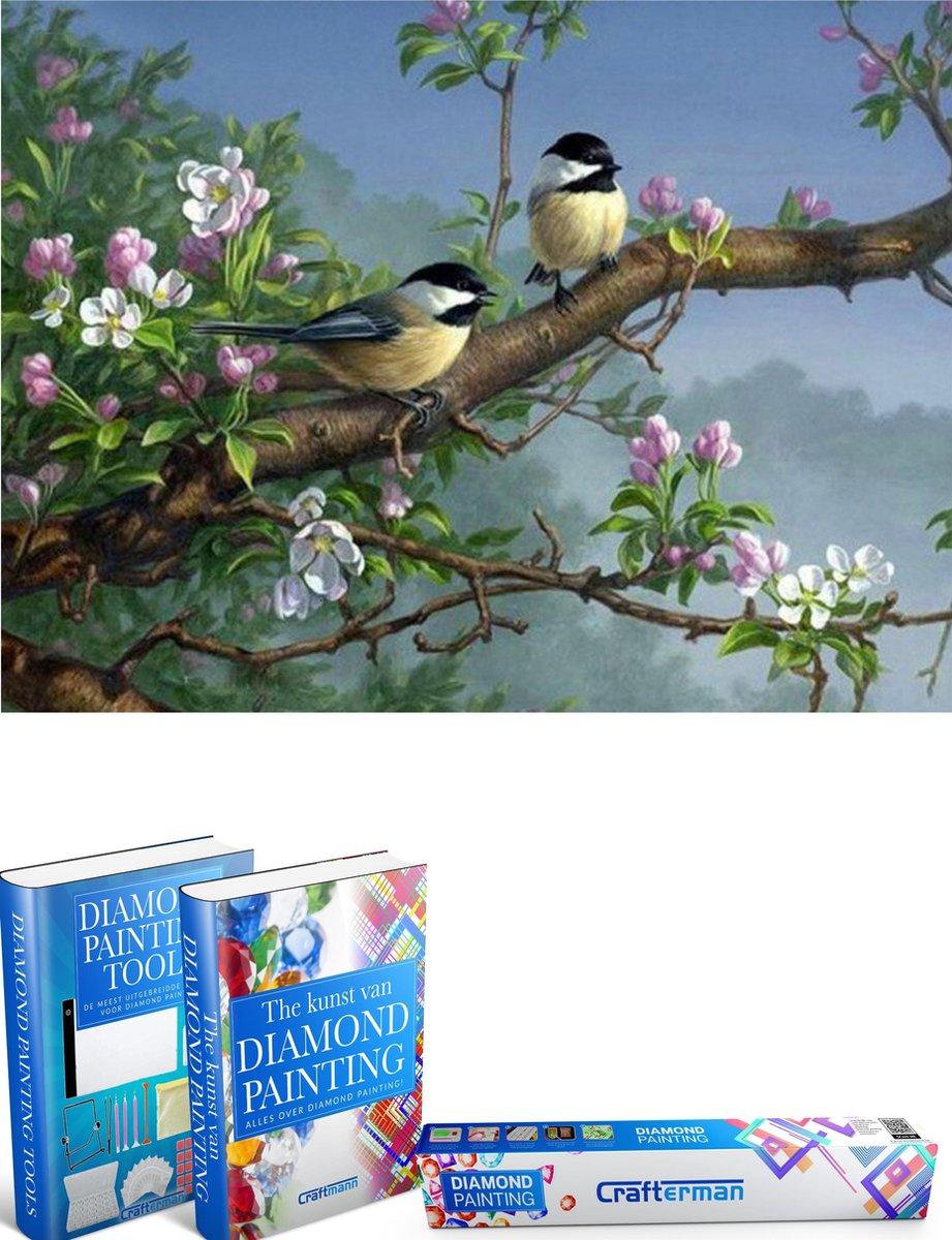 Crafterman™ Diamond Painting Pakket Volwassenen - vogels met bloemen op een tak - 40x30cm - volledige bedekking - vierkante steentjes - Met 2 E-Books - Moederdag cadeau