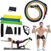 Resistance Bands Set - Fitness Elastiek - Weerstandsbanden Set - Handvaten - Enkelbanden - Fit - Fullbody - Inclusief Opbergtas En Handleiding