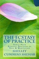 The Ecstasy of Practice